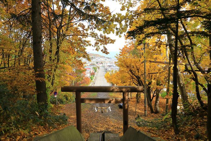 熊碓神社からの眺め