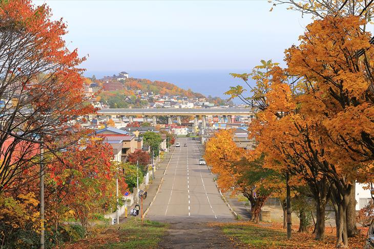 熊碓神社からの風景