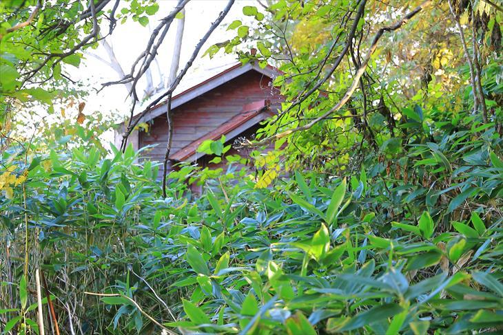 柾里神社の社殿