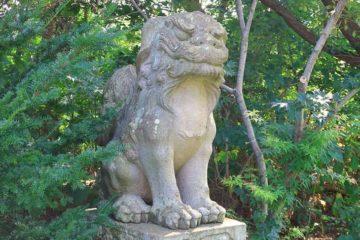 小樽天満宮の狛犬