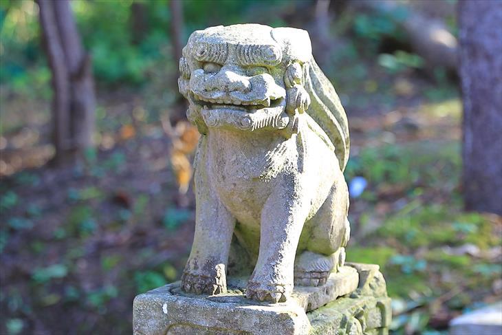 塩谷神社 狛犬様