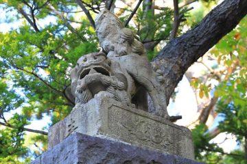 宗圓寺の狛犬様