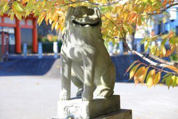 住吉神社 狛犬
