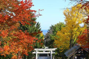 住吉神社から見る紅葉と海