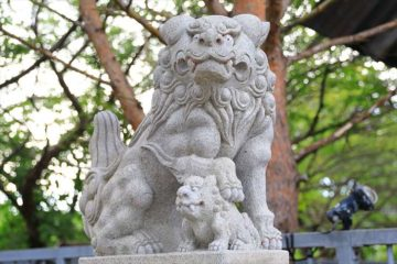 高島稲荷神社の狛犬様