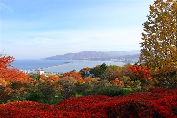 手宮公園の紅葉と小樽港