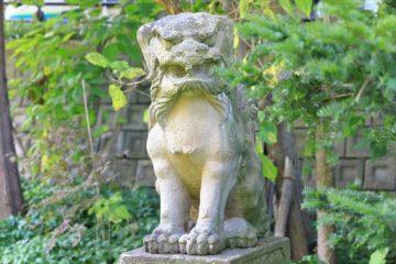 小樽 天満宮 狛犬